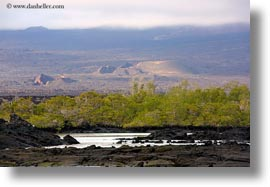 ecuador, equator, fernandina, galapagos islands, horizontal, islands, latin america, photograph