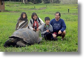 asian, ecuador, equator, families, galapagos islands, groups, horizontal, latin america, natural habitat, people, tortoises, tourists, womens, photograph