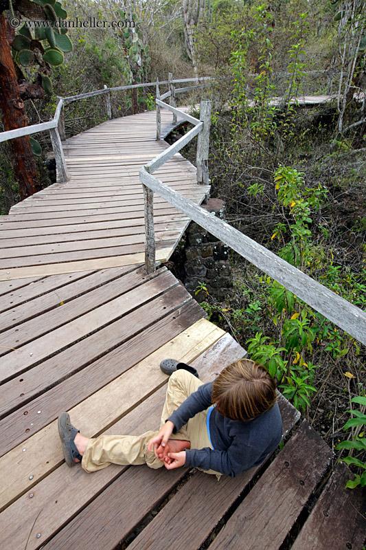 Wood Plank Walkway : Wood plank walkway
