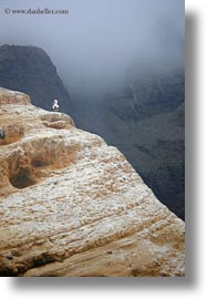 boobies, cliffs, ecuador, equator, galapagos islands, latin america, nazca, santa cruz, vertical, photograph