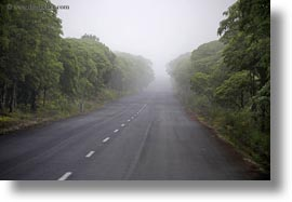 ecuador, equator, foggy, galapagos islands, gemelos sink hole, horizontal, latin america, roads, santa cruz, photograph