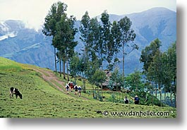 ecuador, equator, highlands, hikers, horizontal, latin america, photograph