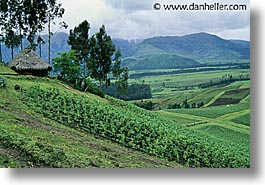 ecuador, equator, fields, highlands, horizontal, houses, latin america, photograph