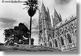 bell towers, black and white, buildings, churches, ecuador, equator, horizontal, latin america, nature, palm trees, plants, quito, religious, structures, trees, photograph