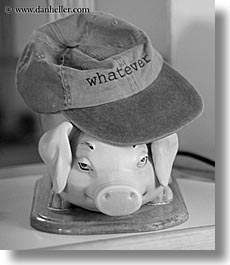baseball, baseball cap, black and white, cap, clothes, ecuador, equator, hats, heads, latin america, pigs, quito, vertical, photograph