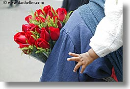 babies, ecuador, equator, hands, horizontal, latin america, quito, red, roses, photograph
