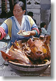 ecuador, equator, heads, latin america, pigs, saquisili, vertical, photograph