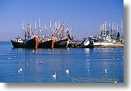estuary, horizontal, latin america, mexico, shipwrecks, photograph