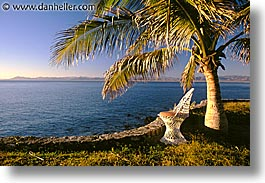 chairs, horizontal, latin america, mexico, palms, punta chivato, photograph