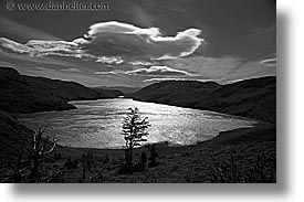 black and white, clouds, horizontal, lakes, latin america, patagonia, trees, photograph