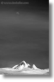 black and white, close ups, glaciers, latin america, moon, moreno glacier, patagonia, vertical, photograph