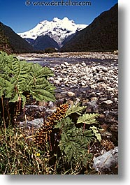 latin america, mountains, patagonia, stream, vertical, photograph
