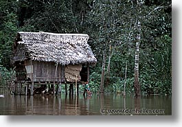 amazon, horizontal, jungle, latin america, peru, river people, rivers, photograph