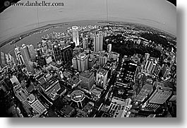 auckland, black and white, cityscapes, fisheye, horizontal, new zealand, nite, photograph