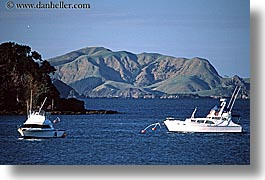 bay, bayof islands, boats, horizontal, islands, new zealand, photograph
