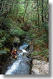 canyons, forests, new zealand, rafting, vertical, photograph