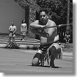 black and white, dance, maori, new zealand, square format, photograph