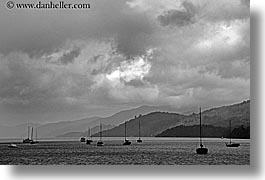 bay, black and white, horizontal, lachmara, new zealand, queen charlotte, photograph