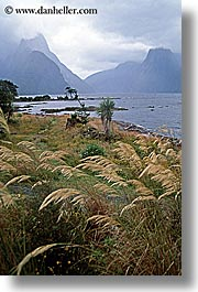 fjord, foggy, milford sound, new zealand, scenics, vertical, photograph