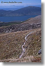 hikers, new zealand, retetahi, tongariro crossing, tracks, vertical, photograph