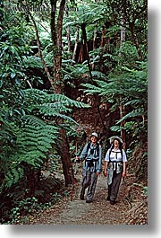 hikers, new zealand, tracks, vertical, wilderness travel, womens, photograph