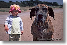 animals, beach dogs, canine, dogs, horizontal, kid, owners, photograph