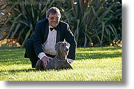 animals, canine, dave, dogs, horizontal, lawn, nox, photograph