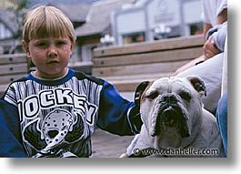 animals, canadian rockies, canine, dogs, horizontal, kid, photograph