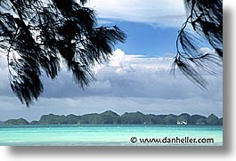 beaches, horizontal, palau, scenics, trees, tropics, photograph