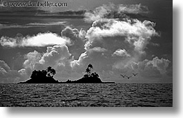 black and white, horizontal, islands, palau, palms, scenics, tropics, twins, photograph
