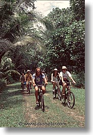 bicycles, groups, palau, people, tropics, vertical, photograph