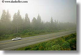alaska, america, cars, fog, highways, horizontal, north america, trees, united states, photograph