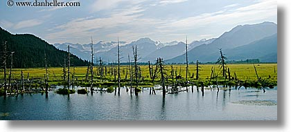 alaska, america, horizontal, mountains, north america, panoramic, rivers, united states, photograph