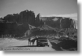 america, arizona, black and white, desert southwest, horizontal, monument, monument valley, mules, north america, united states, valley, western usa, photograph