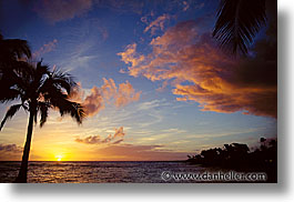 america, hawaii, horizontal, north america, palms, sunsets, united states, photograph
