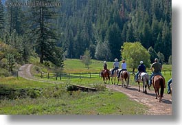 activities, america, clothes, forests, hats, helmets, horizontal, horseback riding, horses, idaho, nature, north america, people, plants, red horse mountain ranch, riding, trees, united states, photograph