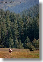 activities, america, forests, horseback riding, horses, idaho, nature, north america, people, plants, red horse mountain ranch, riding, trees, united states, vertical, photograph