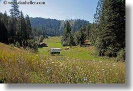america, horizontal, idaho, north america, red horse mountain ranch, scenics, stage coach, united states, wildflowers, photograph