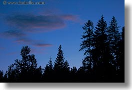 america, dusk, horizontal, idaho, north america, red horse mountain ranch, scenics, sky, trees, united states, photograph