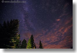 america, horizontal, idaho, long exposure, milky, north america, red horse mountain ranch, scenics, trees, united states, way, photograph