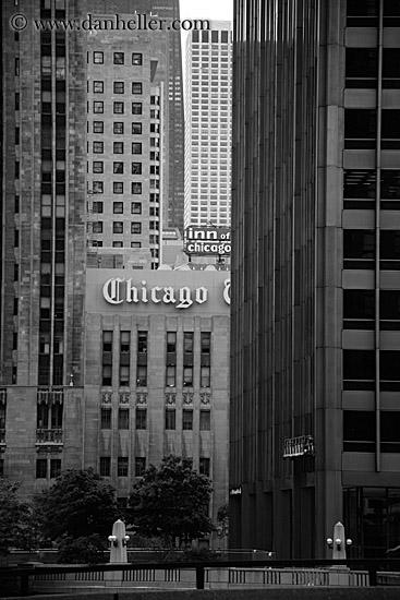 chicago tribune. chicago-tribune-bldg-bw.jpg