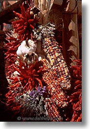 america, corn, desert southwest, indian country, indians, new mexico, north america, santa fe, southwest, united states, vertical, western usa, photograph