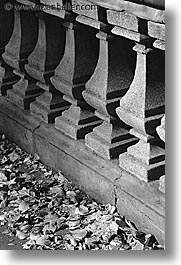 america, black and white, cement, central park, leaves, new york, new york city, north america, rails, united states, vertical, photograph