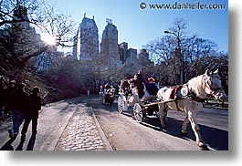 america, central park, horizontal, new york, new york city, north america, park, united states, photograph