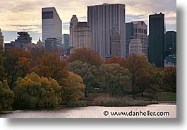 america, central park, cities, horizontal, new york, new york city, north america, trees, united states, water, photograph