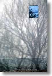 america, new york, new york city, north america, shadows, trees, united states, vertical, photograph