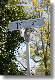 america, ashland, main, nature, north america, oregon, plants, signs, streets, trees, united states, vertical, photograph