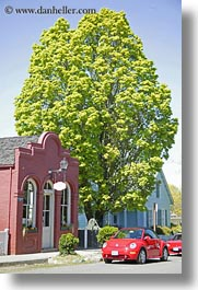 america, ashland, bricks, bug, buildings, colors, green, materials, nature, north america, oregon, plants, red, trees, united states, vertical, photograph
