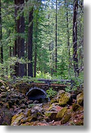 america, bridge, forests, north america, oregon, rogue gorge, stones, united states, vertical, photograph