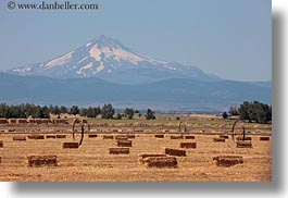 america, bales, hay, horizontal, mt jefferson, north america, oregon, scenics, united states, photograph
